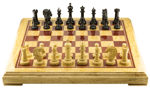 "Chess set ""Champion's mind"""
