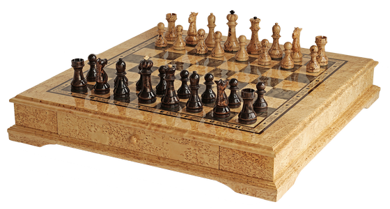 "Chess set ""Silent maneuvers"""